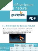 Especificaciones Del Gas Natural