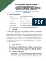 Plan de Mejora de Los Aprendizajes II Dìa Del Logro - Copia