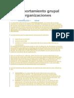 El Comportamiento Grupal en Las Organizaciones