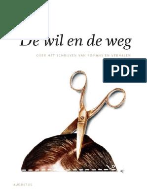Brokken Jan C De Wil En De Weg