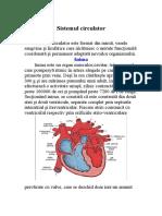 sistemul_circulator