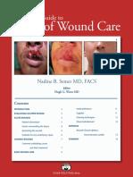 help_basicwoundcare.pdf