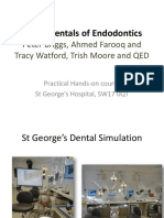 Fundamentals of Endodontics Lecture 2014