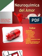 Neuroquímica Del Amor