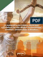 A Administração Pública Municipal e a efetivação dos direitos fundamentais