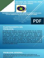 tesis maestria Pedro.pptx