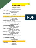 RAZONES FINANCIERAS (1).xlsx