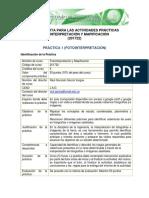 Hoja de Ruta PDF