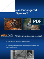 7-11yrs - What is an Endangered Species - Classroom Presentation