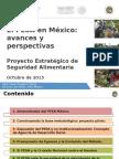 El PESA en México Avances y Perspectivas_Oct2015