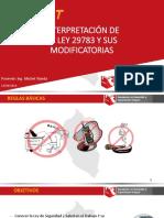 Interpretacion de La Ley 29783 y Sus Modificatorias - Michel Tejeda