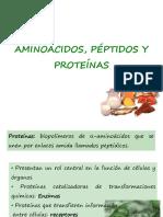 Aminoacidos VL 2011