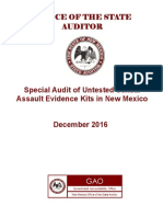 SAEK Audit - December 2016