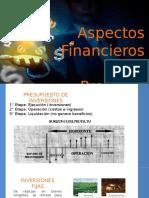 Aspectos Financieros Del Proyecto