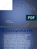 grcaeful decorator crab powerpoint fixed click it