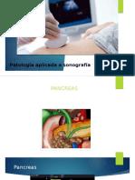 repaso pancreas