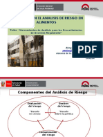 04 Analisis Riesgos 28oct 2014 DIGESA