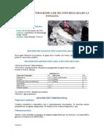 241341207-Descripcion-Petrografica-de-Seccion-Delgada-de-La-Tonalita.docx