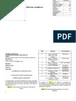 Identificacion Marcha Analitica