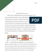 persuasive essay eng 101n