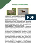 Manejo Integrado de La Hormiga Arriera