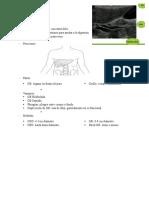 patologias de gb  1  weebly