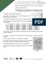 FA Biologia Tema I e Movimentos Transmembranares Março