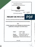 pfe.gc.0481.pdf