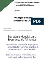 Análise de Risco OGM PDF