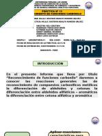 Practica 13 - Quimica Organica Analitica Funcional