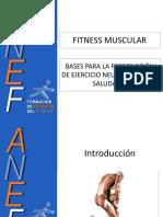BASES+PARA+LA+PROGRAMACI$C3$93N+DE+EJERCICIO+NEUROMUSCULAR+SALUDABLE