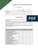 TEST DE AGRESIVIDAD INFANTIL - FORMATO .doc