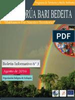 Boletín Informativo Nº3