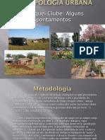 Trabalho Antropologia Brasil Mod. 2010