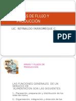 TEMA III - AREAS DE FLUJO Y PRODUCCION.pptx