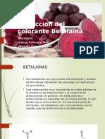 Extracción Del Colorante Betalaína