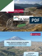 Proyecto Tia Maria-grupo 6