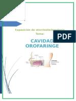 Anatomis y Fisiologia de Orofaringe