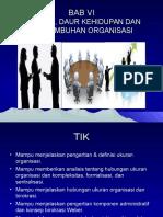 Ukuran Dan Daur Hidup Organisasi Presentasi