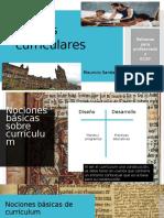 Teorías Curriculares ECAP