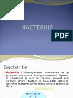 Curs 4 Bacteriile