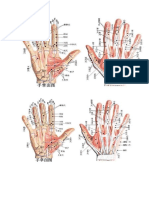 285409201-Atlas-Anatomico-en-Color-de-Los-Puntos-Extraordinarios-de-Master-Tung.pdf