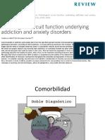 Circuitos Ansiedad y Adicción