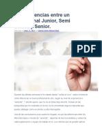 Las Diferencias Entre Un Profesional Junior