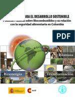 bioenergia_colombia.pdf