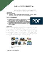 Contaminación Ambiental. Agentes y Fuentes