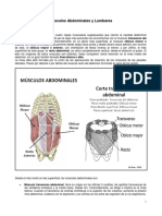 08MuscAbdLumbares.pdf