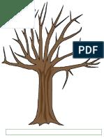 Copac Primavara Evaluare