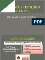 anatomia y fisiologia de la piel.pptx