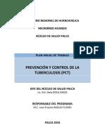 Plan Anual PCT - Núcleo 2016